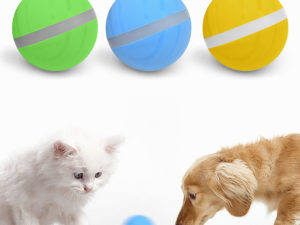LED Pet Motion Ball