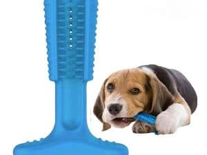 Doggie DIY Toothbrush