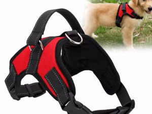 Adjustable Pet Harness