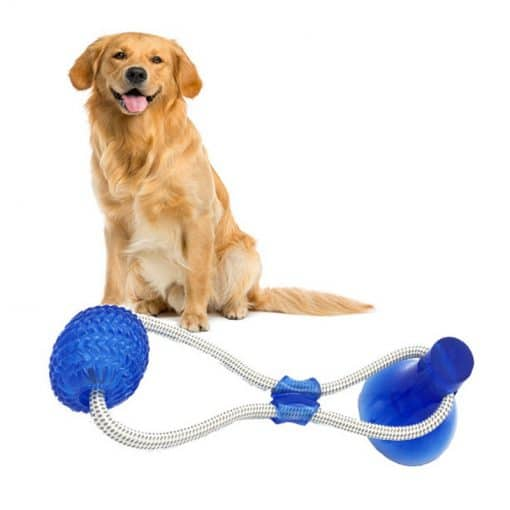 Primal Suction Tug Toy