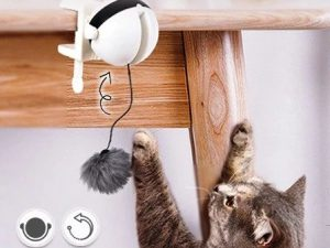 AutoBall Lifting Cat Toy