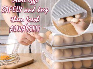 Easy Egg Storage Dispenser Box