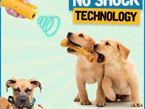Anti Barking Training Devices