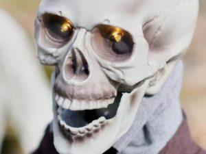 Animated Groundbreaker Skeleton