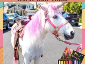 [PROMO 30% OFF] GlamEquine™ Stylish Horse Hair Chalk