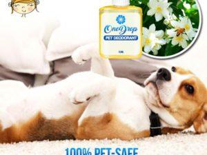 OneDrop Pet Odor Eliminator