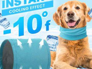 Magicool™ -10°F Dog Cooling Scarf
