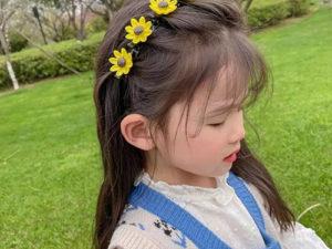 2021 Girl Sweet Princess Hairstyle Hairpin-Buy 3 Get 2 Free!!