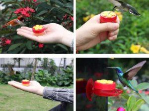 (🔥Summer Hot Sale - Save 50% OFF) Handheld Hummingbird Feeder
