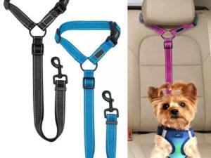 2020 Must-Have Dog Car Seat Belt