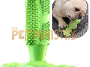 (❤️Clearance Sale: Buy 2 Get Extra 10% OFF) Dog Toothbrush